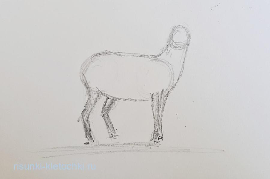 Как нарисовать Оленя Поэтапно Карандашом