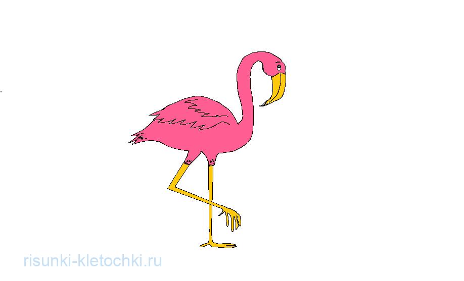 Как нарисовать Фламинго Поэтапно Карандашом