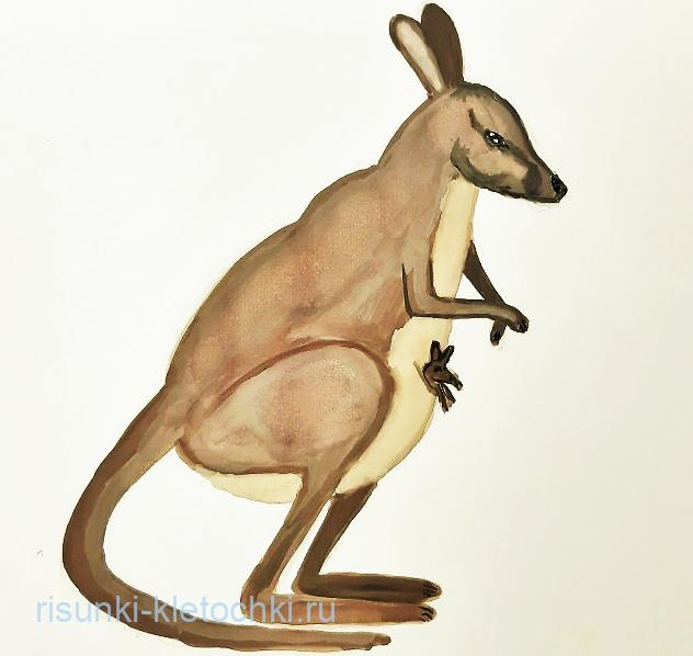 Как-нарисовать-кенгуру-поэтапно-акварелью