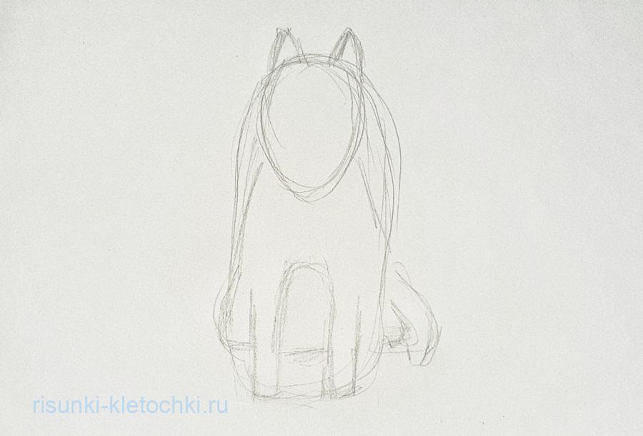 Как нарисовать Хаски потапно карандашом
