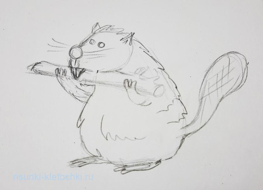 Как нарисовать бобра поэтапно карандашом