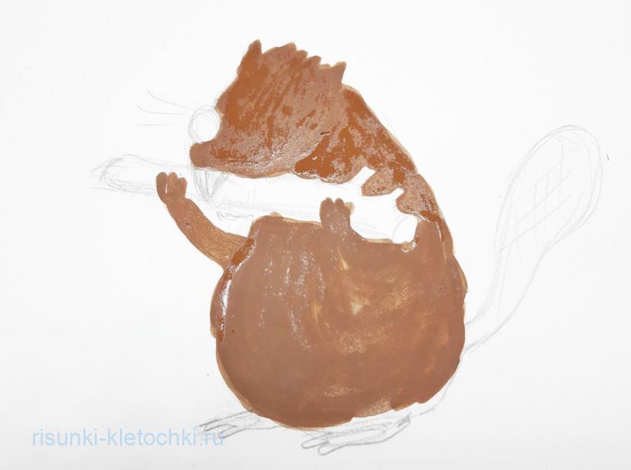 Как нарисовать бобра поэтапно акварелью