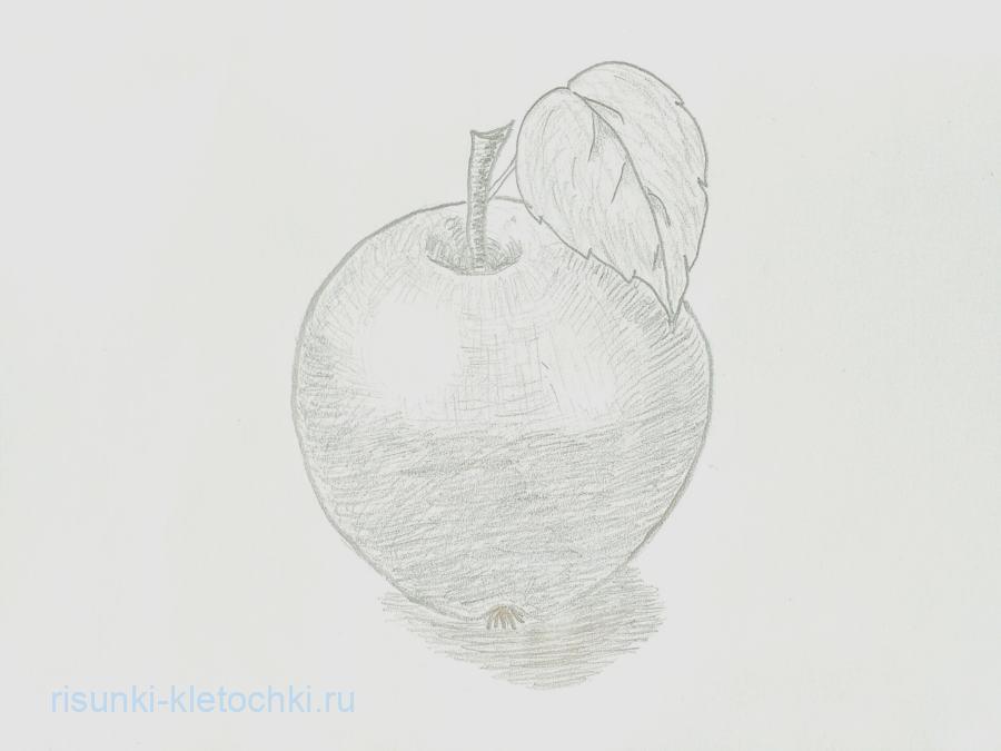 Как нарисовать яблооко поэтапно карандашом