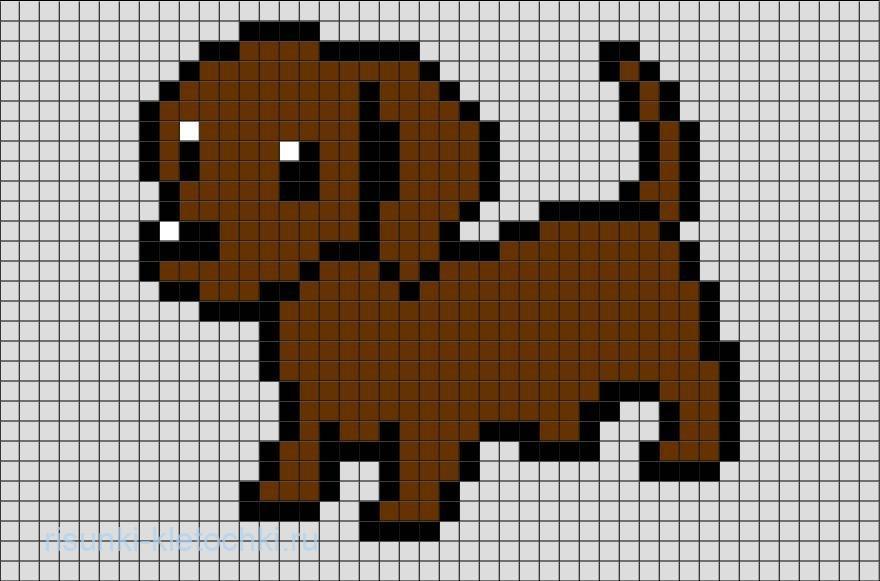 Как нарисовать собаку Таксу по клеточкам в тетради