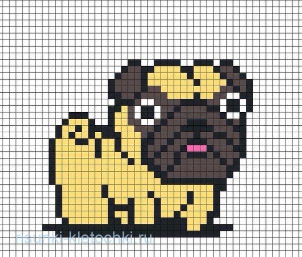 Как нарисовать собаку мопса по клеточкам в тетради