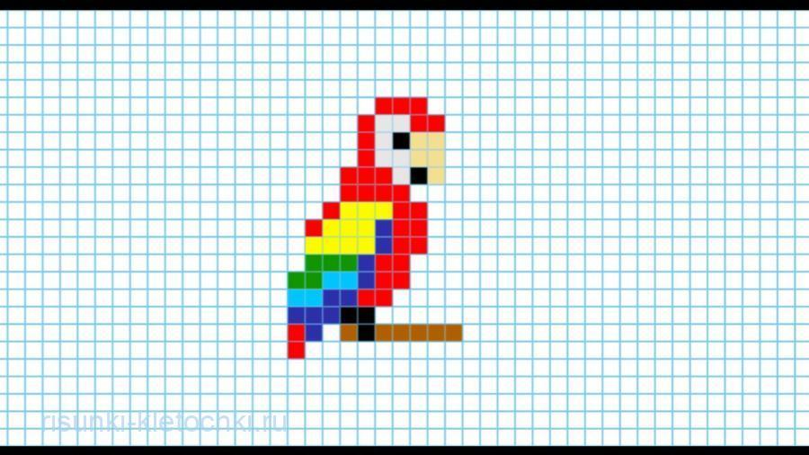 рисунки по клеточкам маленькие животные попугай