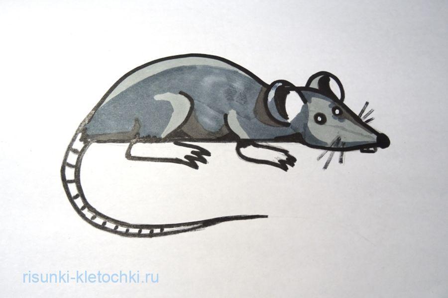 Как нарисовать крысу  поэтапно  - символ 2020 года