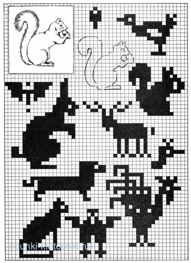 Рисунки по клеточкам черно-белые и маленькие - Жители леса